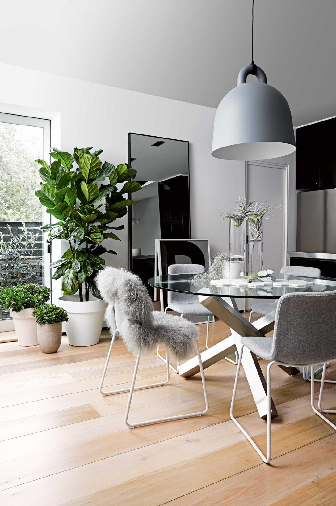 dining-room-grey-pot-plants-floorboards-sept15-20150914152324~q75,dx1920y-u1r1g0,c--