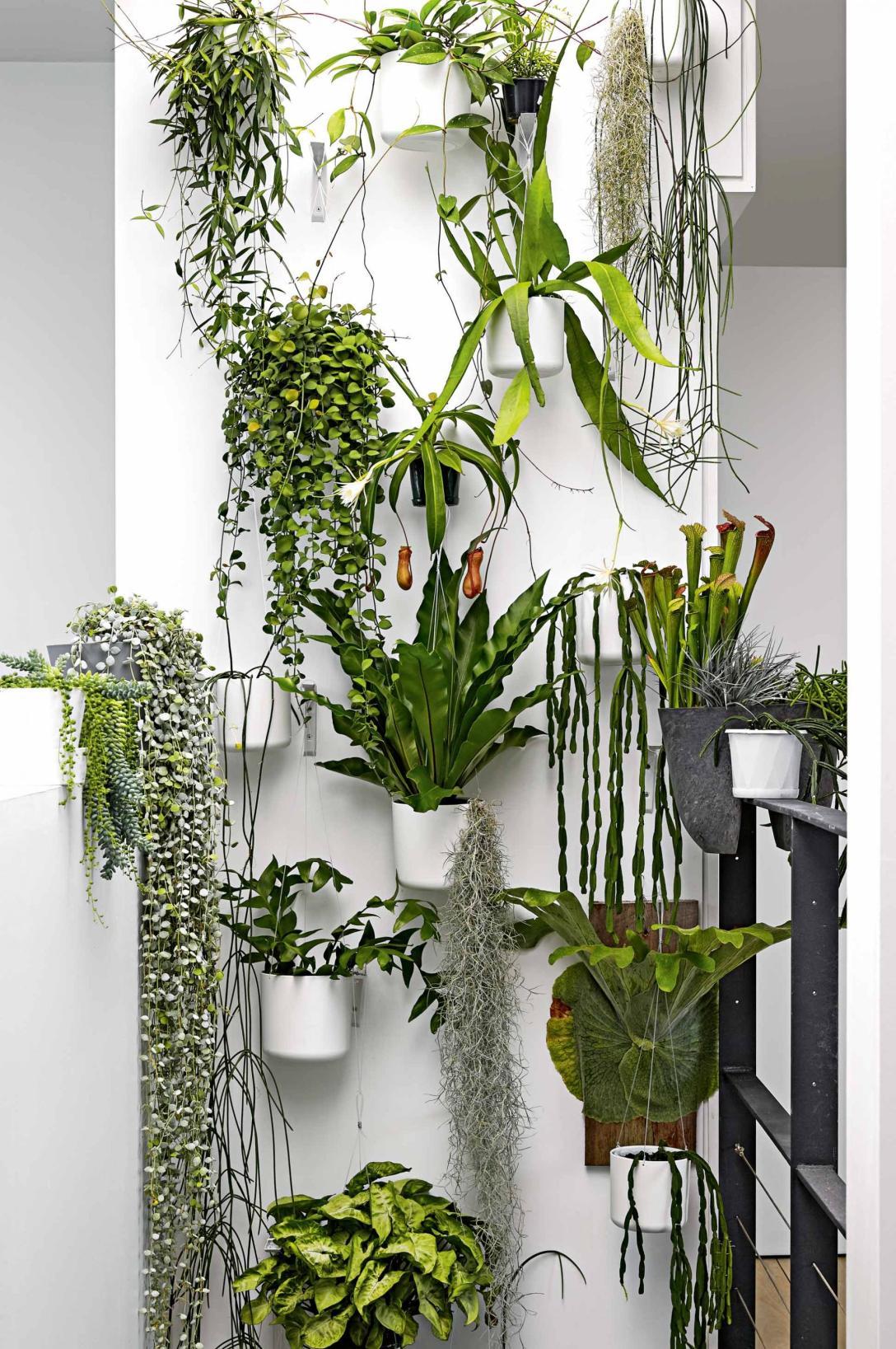green-wall-sept15-20150914164346~q75,dx1920y-u1r1g0,c--